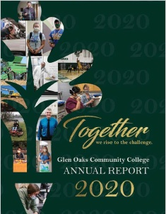 GOCC 2020 Annual Report Cover image